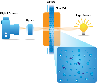 Diagram of How Micro-Flow Imaging Works When Capturing Images of Samples Using Digital Microscopy